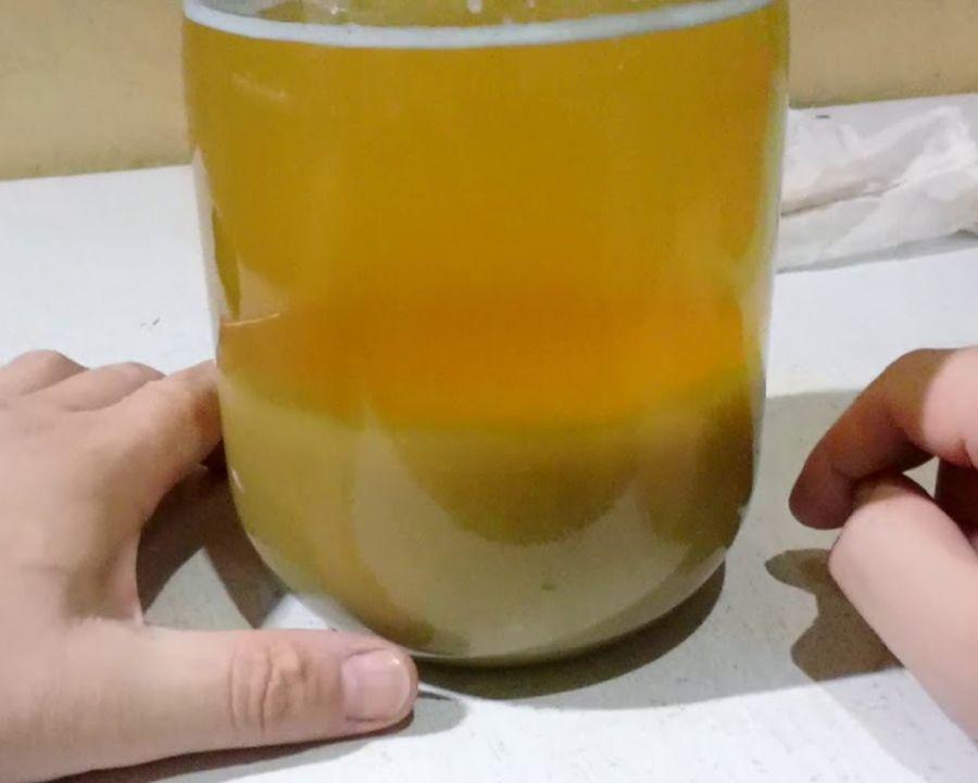 معرفة نوع الجنين بالملح